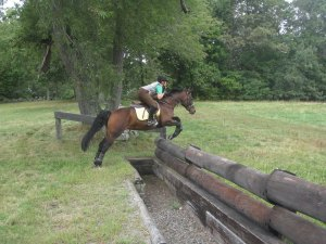 Anna jumping the ditch and wall at Ledyard.