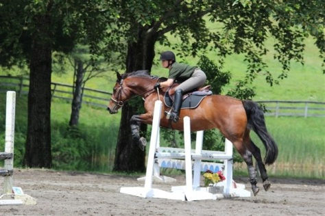 Anna at the July 2014 Tamarack Hill Jumper Show