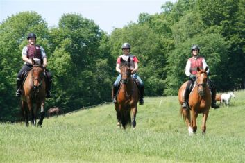 Hacking out with friends to loosen up prior to a cross country school at Tamarack, 2012.