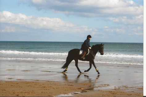 Looking dressage-y at the beach in 2008.