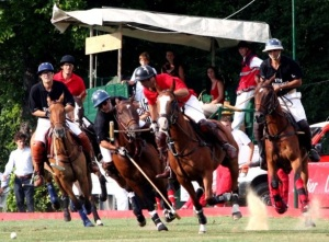 "These polo ponies show how much a horse will naturally lean onto the inside forelimb and shoulder when turning. Polo is a fast moving sport, requiring speed and agility (Clayton, 1991, p 229).  ""Polo3-1-"" by Ems (Emanuel Sanchez de la Cerda) - de.wikipedia.org: 18:50, 16. Mär. 2006 .. Ems .. 800×520 (292.111 Bytes) (* Bildbeschreibung: Sal. Oppenheim Cup Finale 2005 * Fotograf/Zeichner: Emanuel Sanchez de la Cerda (~~~) * Datum: 26.06.2005 18:00). Licensed under CC BY-SA 2.0de via Wikimedia Commons - http://commons.wikimedia.org/wiki/File:Polo3-1-.jpeg#mediaviewer/File:Polo3-1-.jpeg"