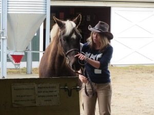 A senior equine studies major gets Coco (leased to UNH by Camp Runoia and a valued horse in the therapeutic riding program) ready for a presentation at the Equine Education Day, spring of 2015.