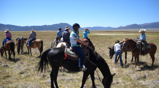 Equestrians and the Quest for Open Space