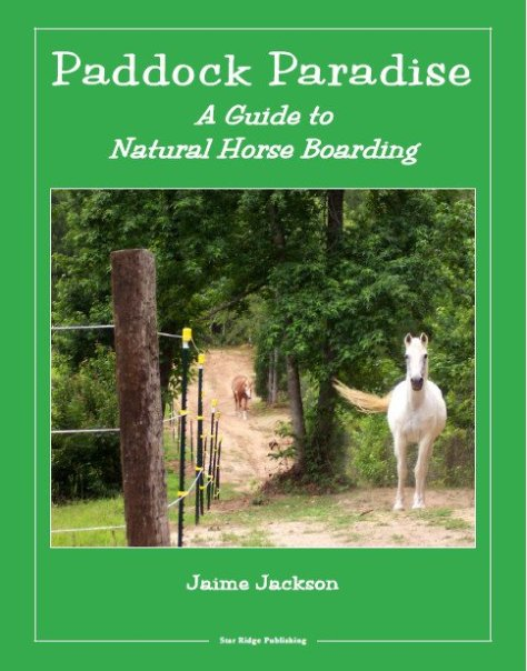 Paddock_Paradise_Front_Cover_1024x1024.jpg