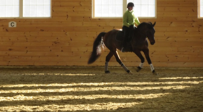 Book Review: Ridden: Dressage from the Horse's Point of View