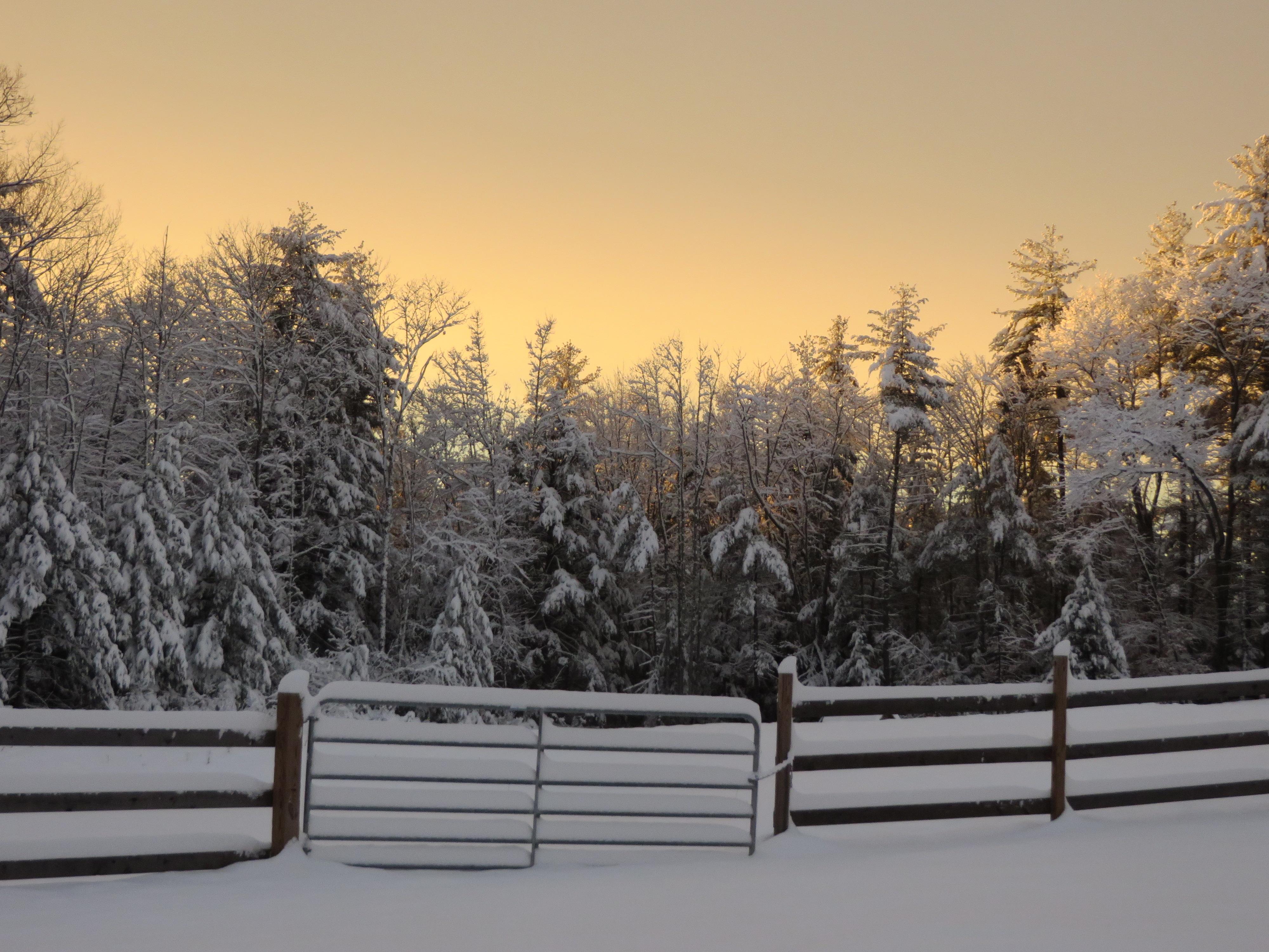 February Sunset 006.JPG