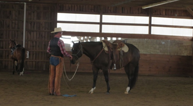 Exploring Fundamental Horsemanship with Kip Fladland